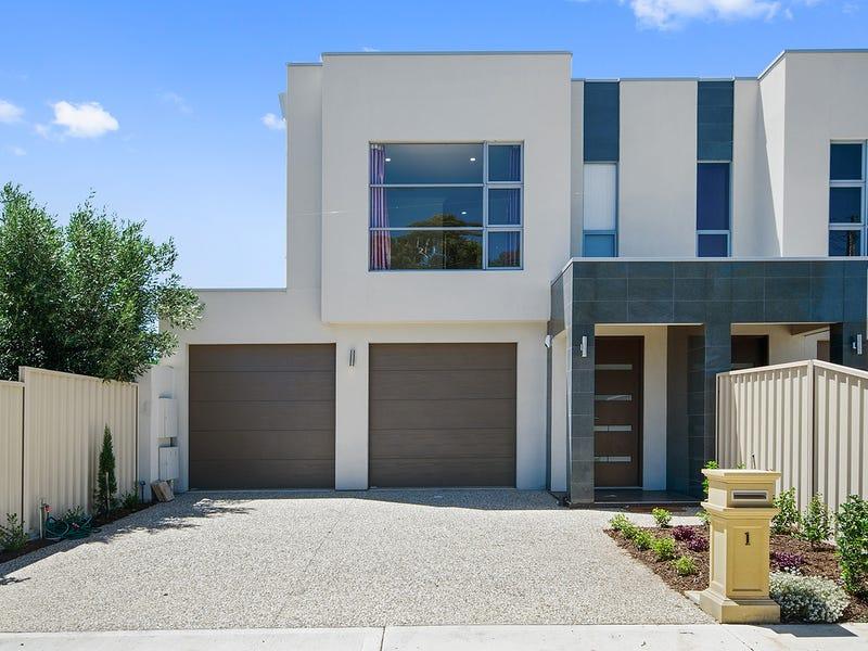 1 Hawkins Avenue, Flinders Park, SA 5025