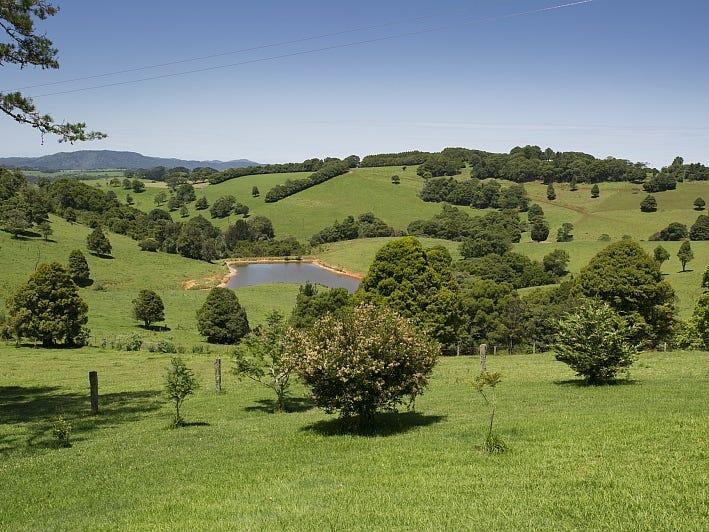 4948 Waterfall Way, Dorrigo, NSW 2453