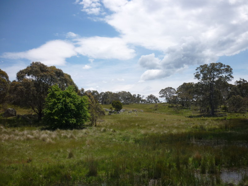 752 Kybeyan Rd, Nimmitabel, NSW 2631