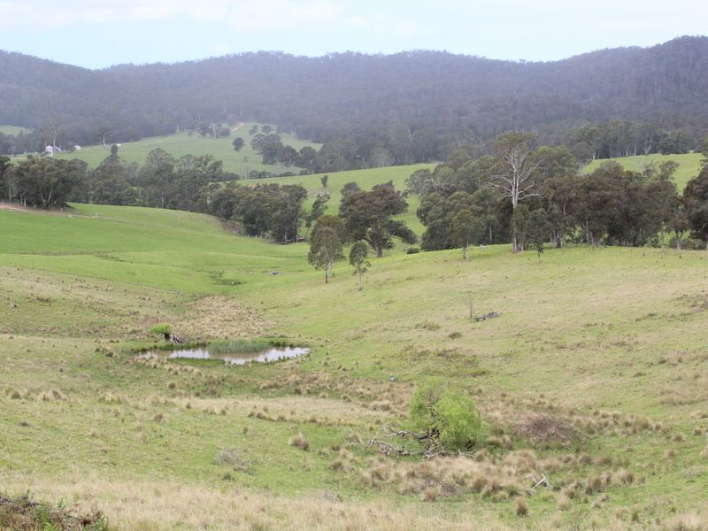 11121 Princes Highway, Cobargo, NSW 2550