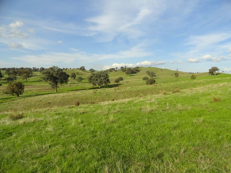 Lot 58 'Part Montrose' Hume Freeway, Mullengandra, NSW 2644