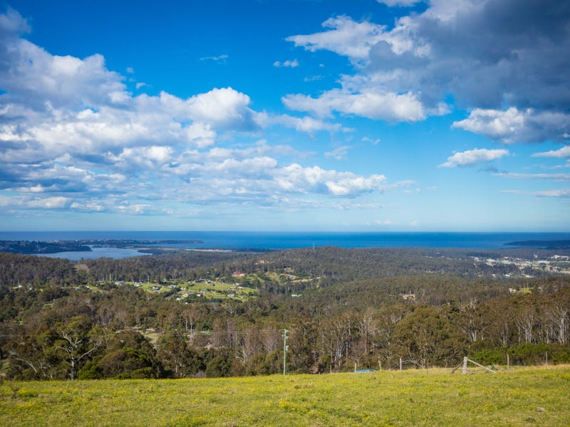 50 Omaru Lane, Bald Hills, NSW 2549