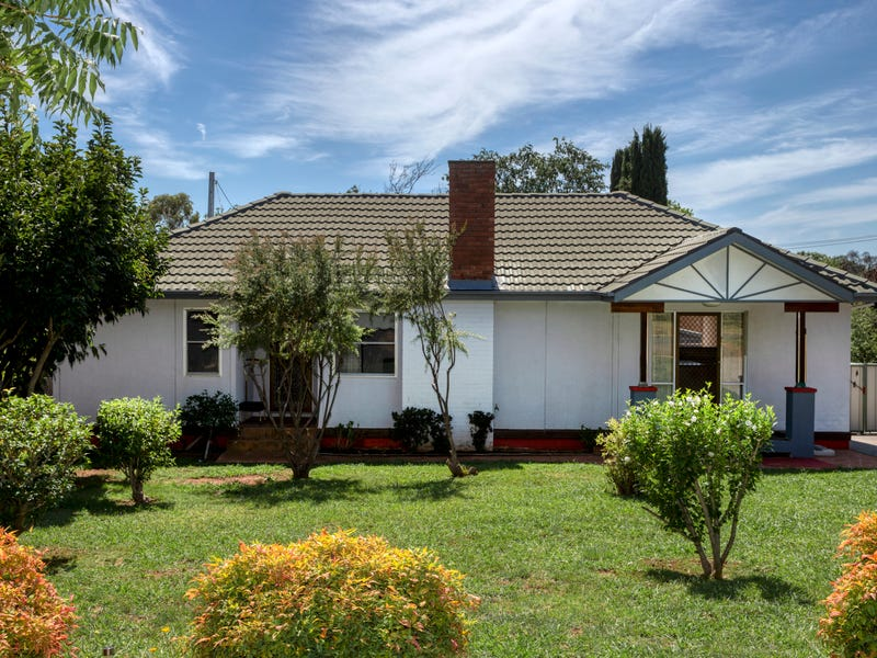 19 Hodgkinson Street, Griffith, ACT 2603