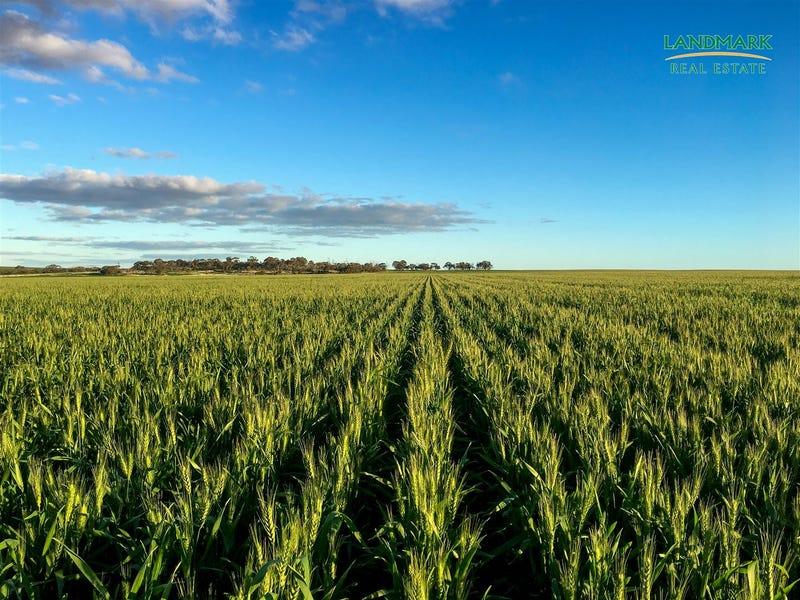 Gurrady Farms, Yuna, WA 6532