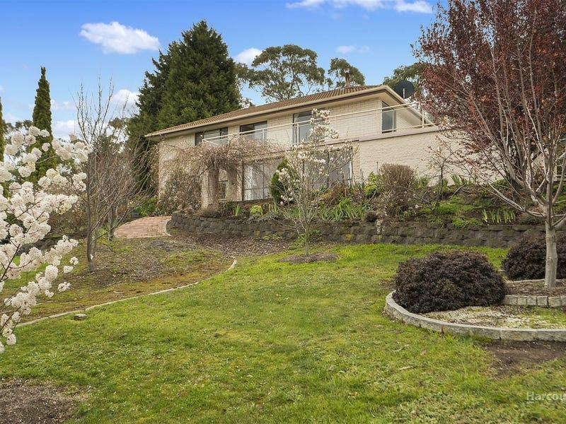 54 Oakbank Road, Otago, Tas 7017