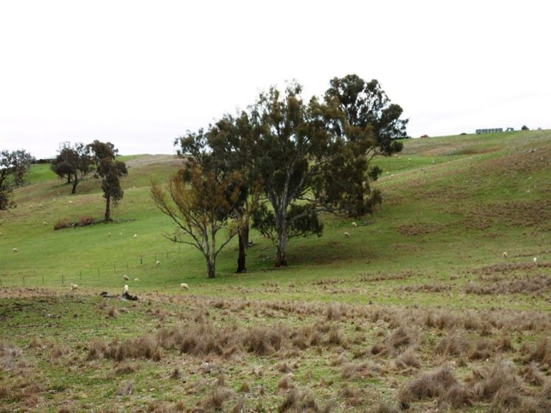 Lot 171 Reynolds Lane, Binalong, NSW 2584
