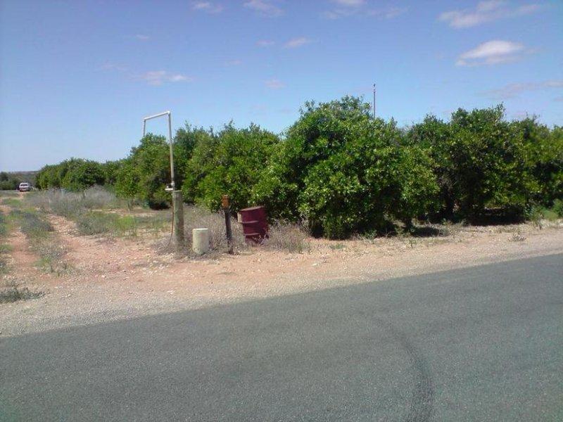 238 Medley Road, Sunlands, SA 5322