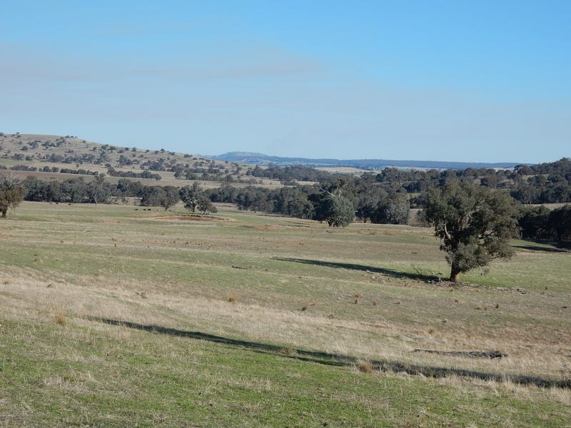 """Mt Pleasant"" - 710 Pulletop Road, Wagga Wagga, NSW 2650"