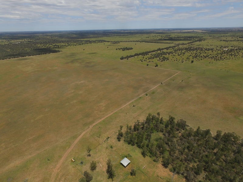 "49492 Leichardt Hwy ""McMillan Downs"", Moonie, Qld 4406"