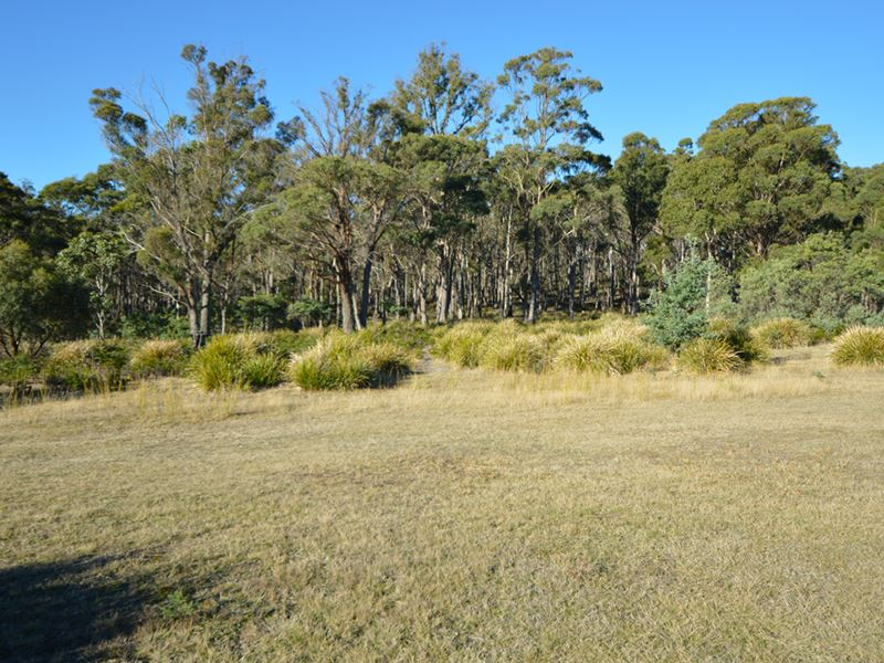 Lot 20 Hungry Flats Road, Colebrook, Tas 7027