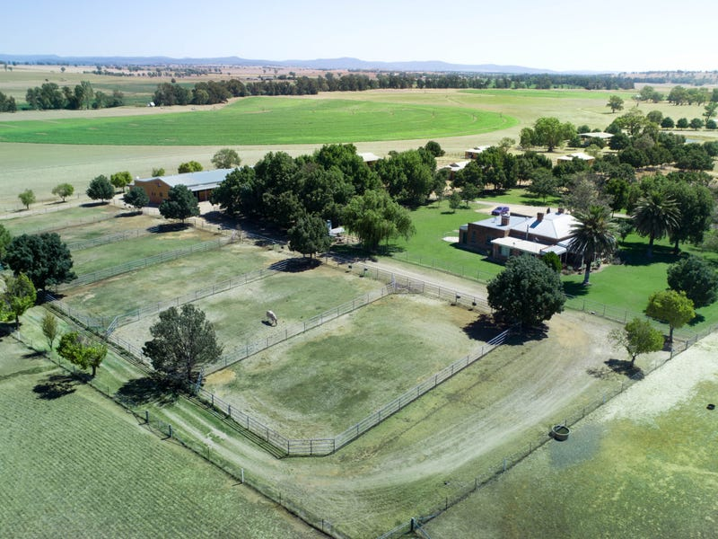 Springdale Stud', Fish Fossil Drive, Canowindra, NSW 2804 - Property