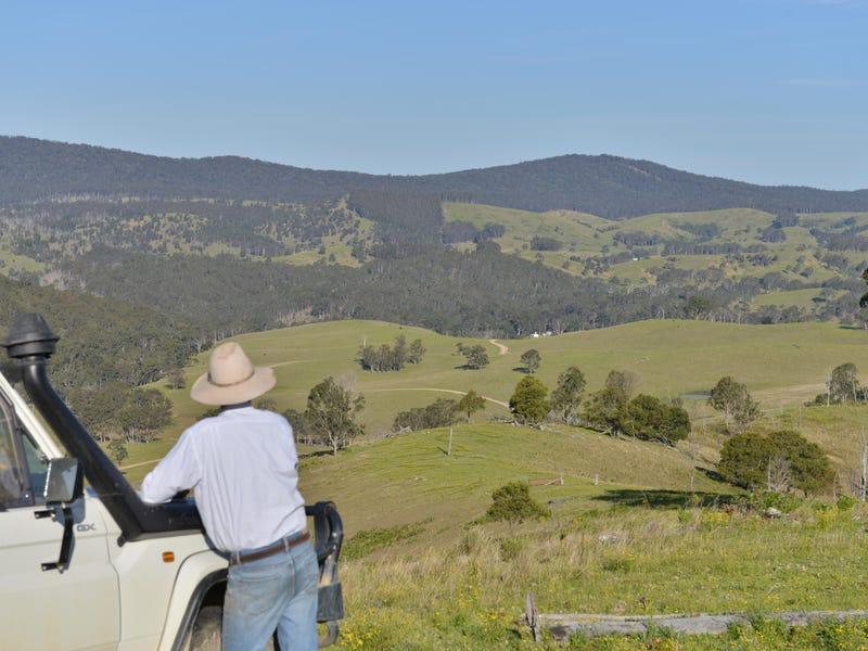758 Gilgurry Road, Tenterfield, NSW 2372