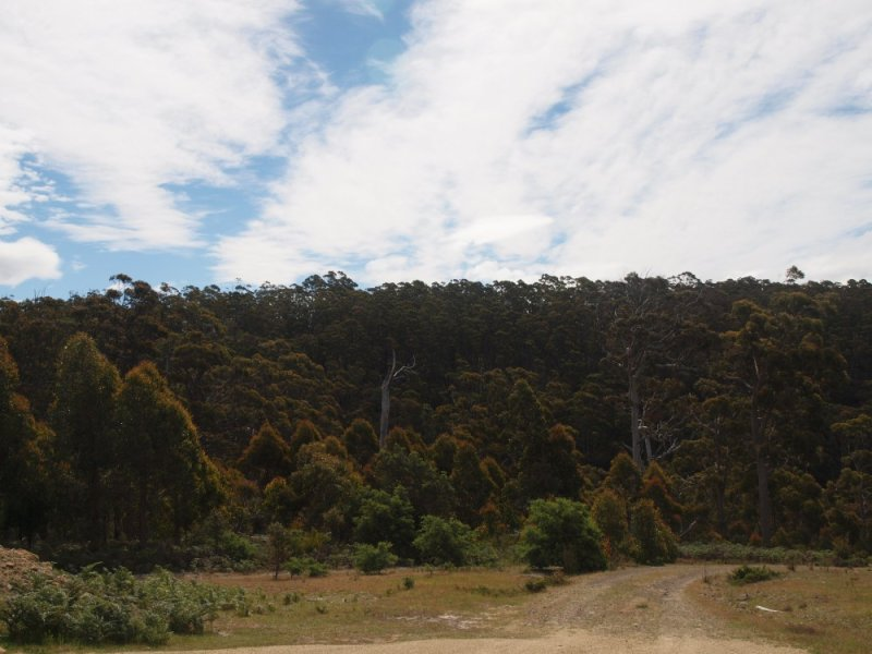 551a Dam Rd, Saltwater River, Tas 7186