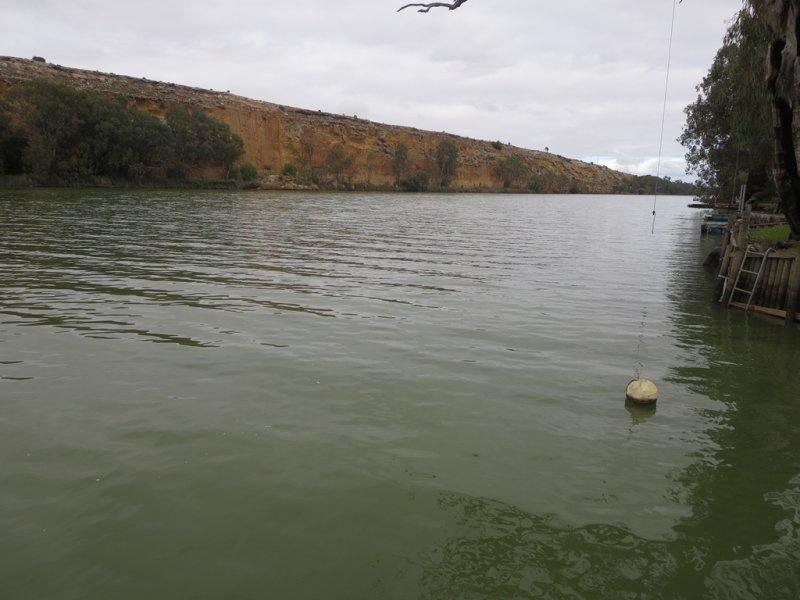 Site 57 Pelde Rd, Punyelroo, SA 5353