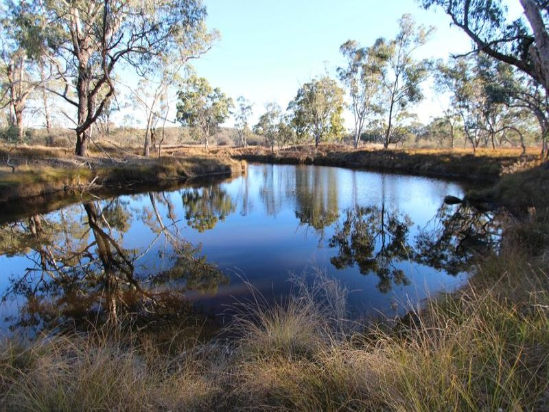 14371 Guyra Road, Tingha, NSW 2369