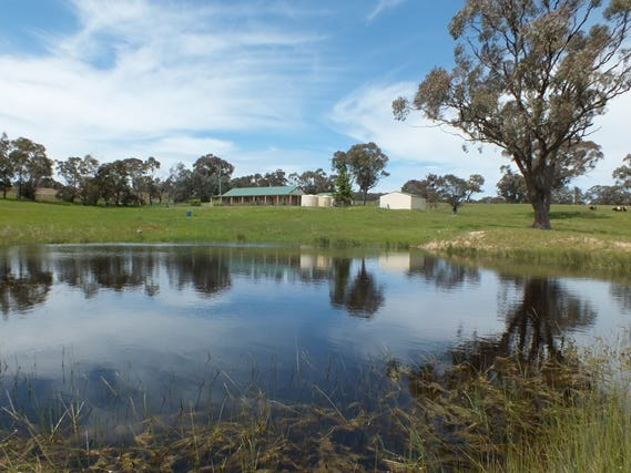 1305 Carlwood Road, O'Connell, NSW 2795