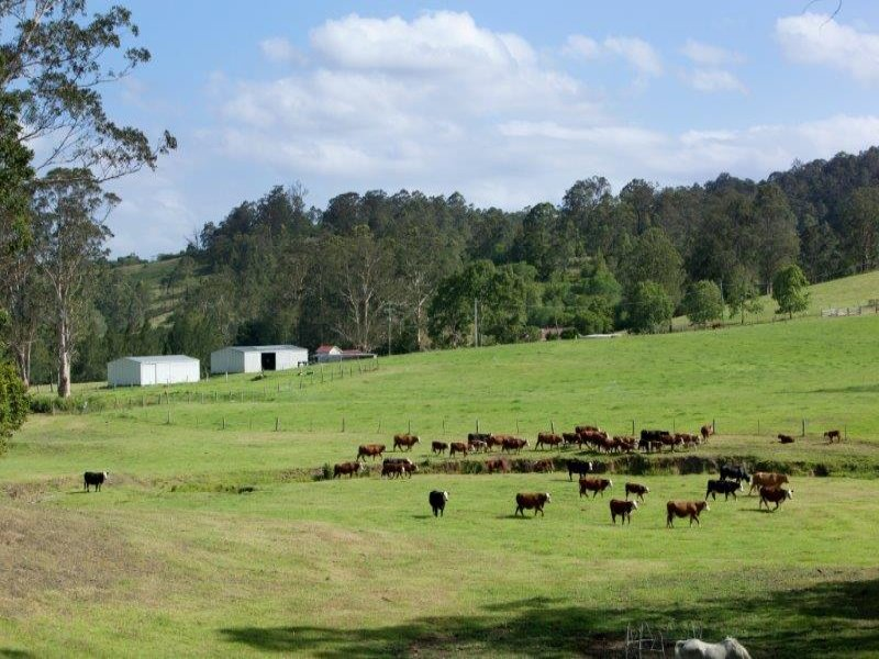 256 Warrawillah Road, Marlee, NSW 2429