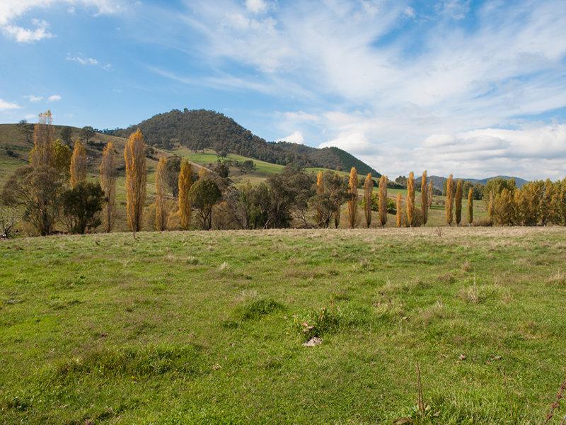 4181 / 4190 Murray Valley Highway Berringama via Corryong, Corryong, Vic 3707