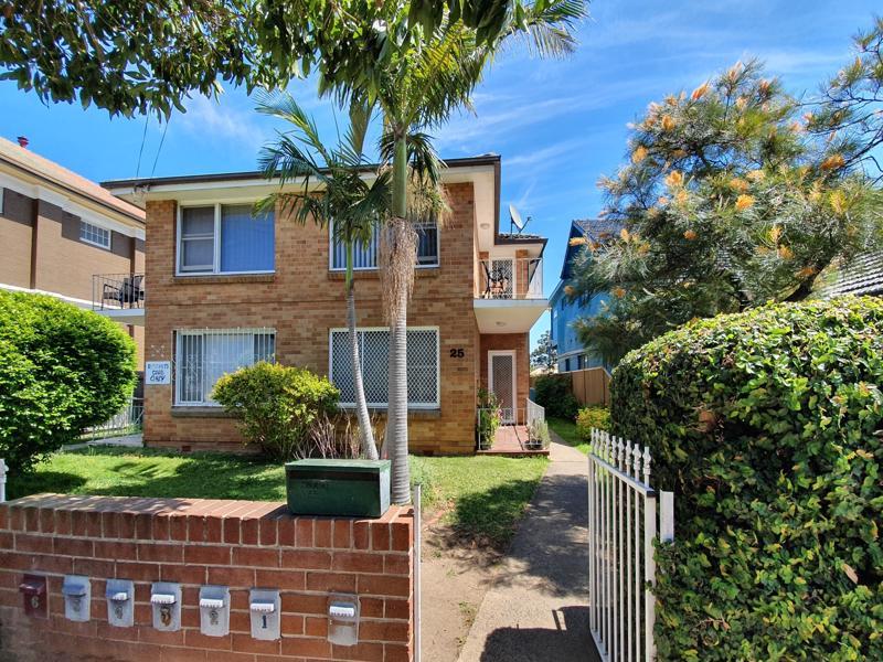 25 Arthur Street, Punchbowl, NSW 2196