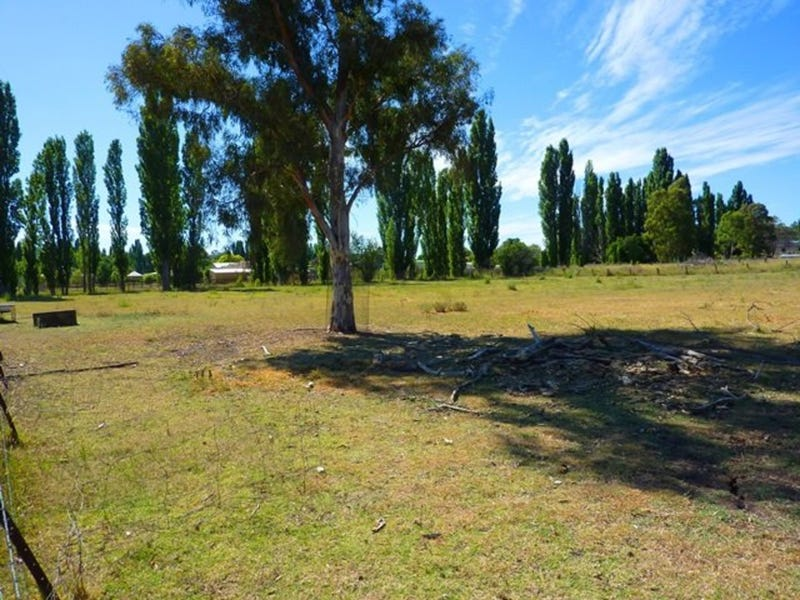 Lots 18, 19 & 20, Lots 18, 19 & 20 Thistle Street, Molong, NSW 2866