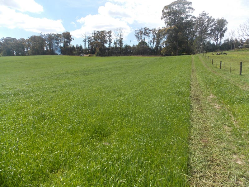 Lot 1, 99 PHEASANT CREEK ROAD, Kinglake, Vic 3763