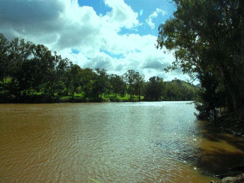 1410 Bundarbo Road, Jugiong, NSW 2726