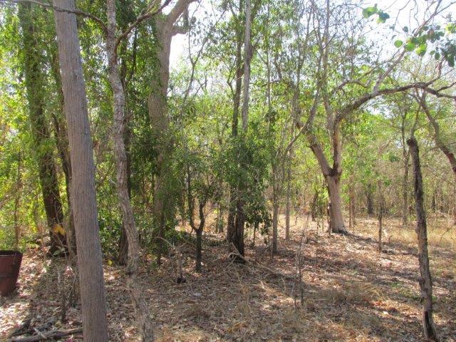 500 Peacock Road, Darwin River, NT 0841