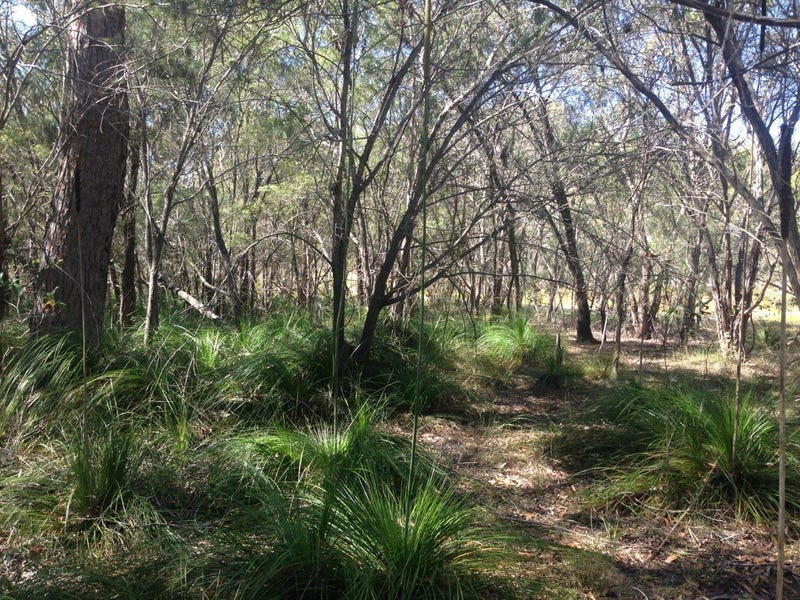 Lot 382 Whyte Cres, Agnes Water, Qld 4677