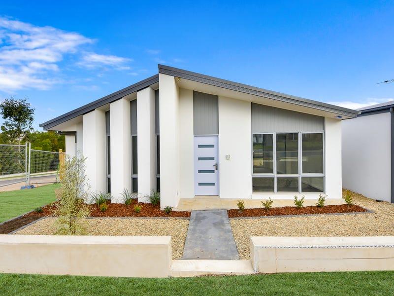 161 Liz Kernohan Drive, Elderslie, NSW 2570