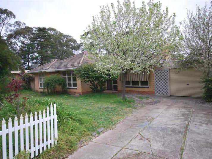 43 Elizabeth Street, Banksia Park, SA 5091
