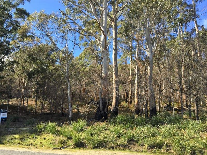. Gladstone Road, Pioneer, Tas 7264