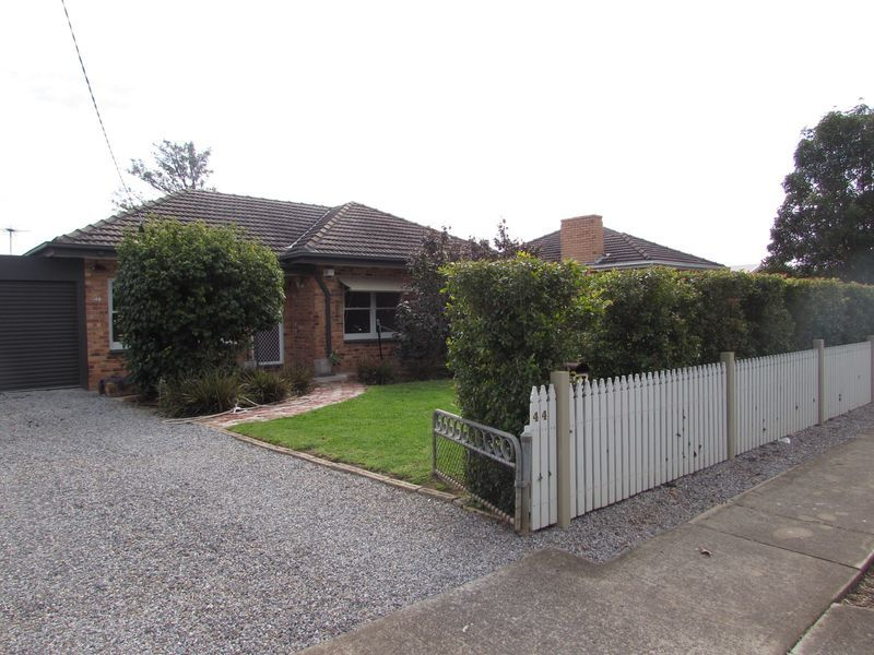 44 Allambee Avenue, Edwardstown, SA 5039