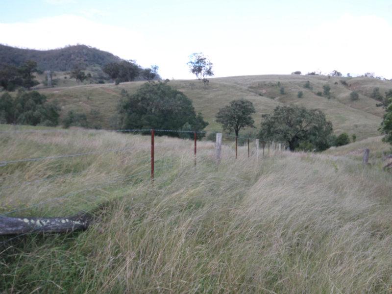Rouchel Gap Road, McCullys Gap, NSW 2333