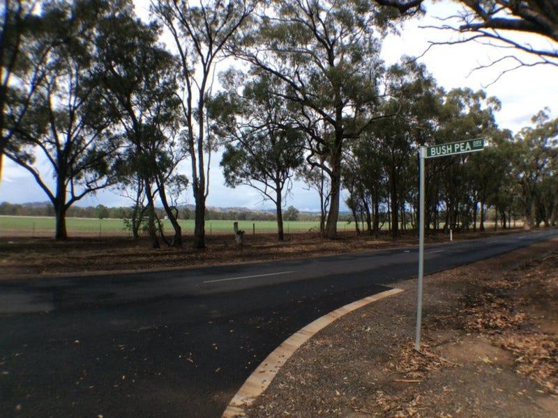 20 Bush Pea Drive, Seymour, Vic 3660