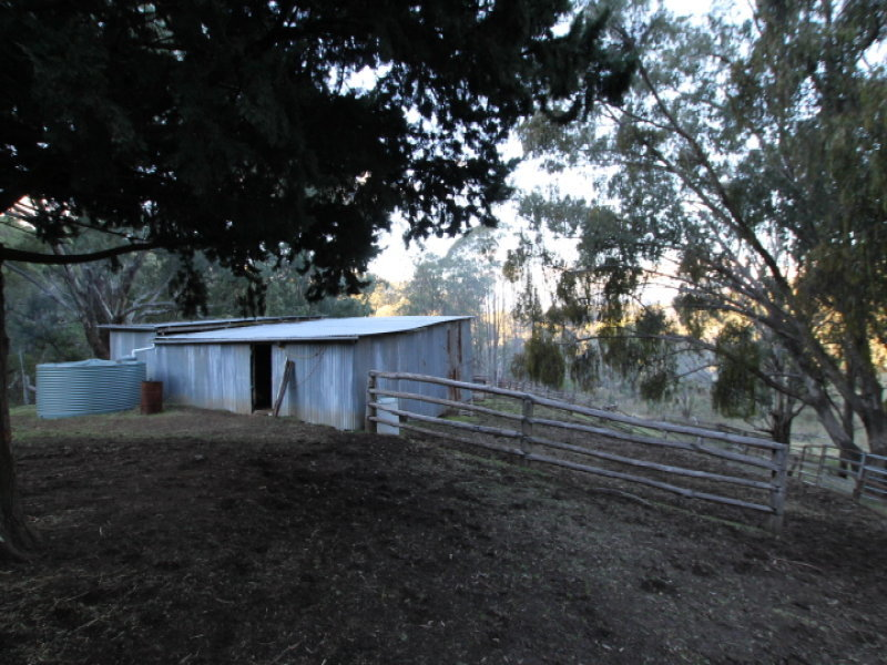 Timor Creek Road, Timor, NSW 2338
