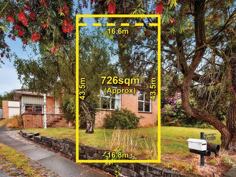 12 Ralton Avenue, Glen Waverley, Vic 3150