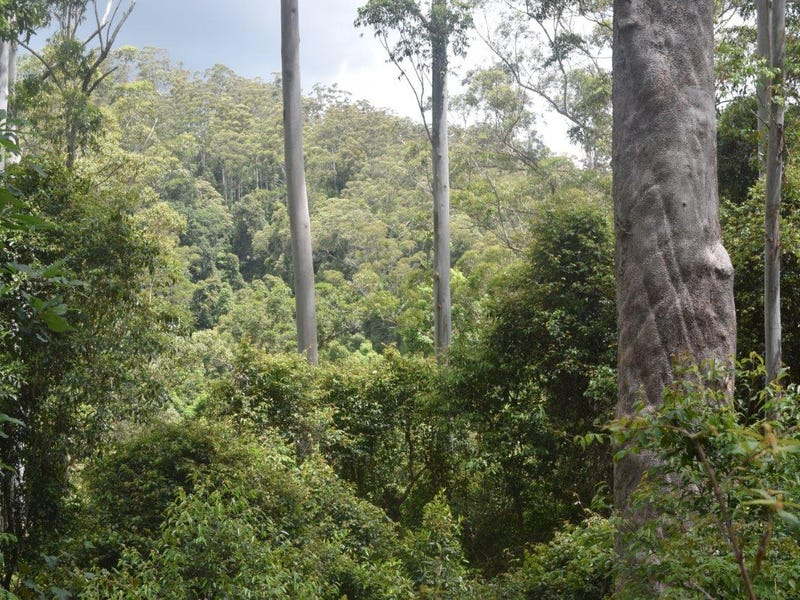 170-170A Lower Bobo Road, Ulong, NSW 2450