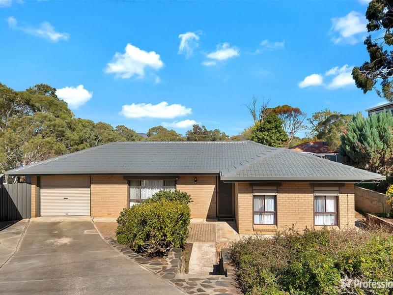 7 Pintubi Court, Modbury North, SA 5092