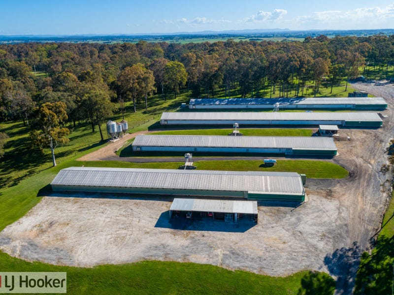 667 Seaham Road, Nelsons Plains, NSW 2324