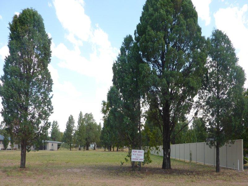 37B Farrar Street, Gilgandra, NSW 2827