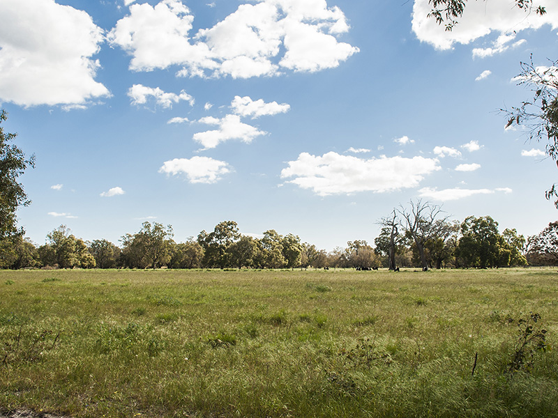 104, Karnup Creek Road, Hopeland, WA 6125