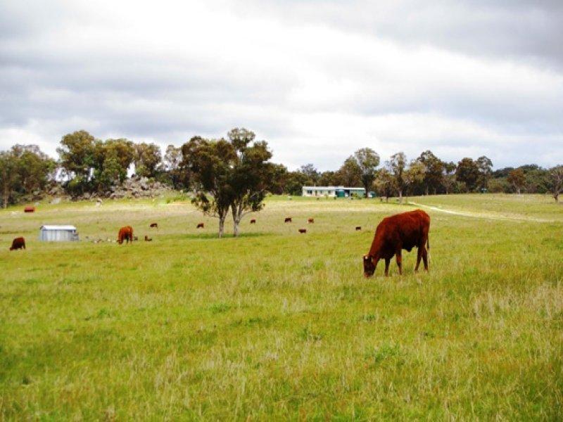 471 Watsons Creek Tilmunda Road,, Bendemeer, NSW 2355