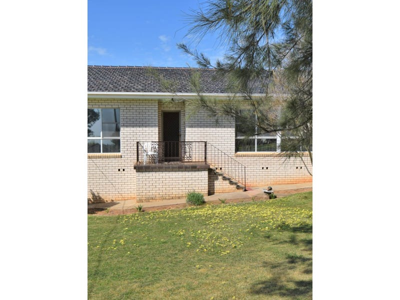 124 Wombat Street, Young, NSW 2594