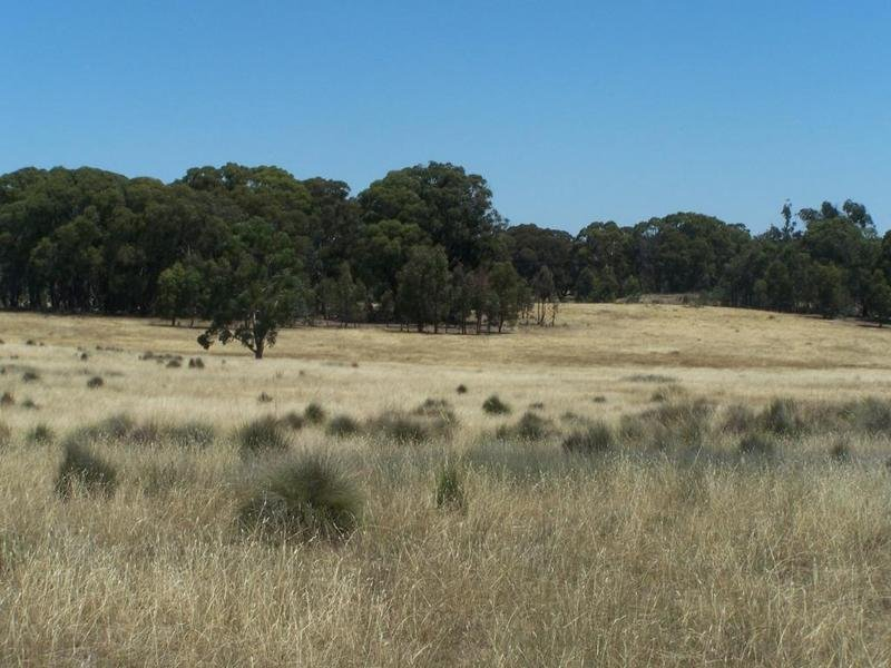 Lot 3 Tyrl Tyrl Road, Golspie, NSW 2580