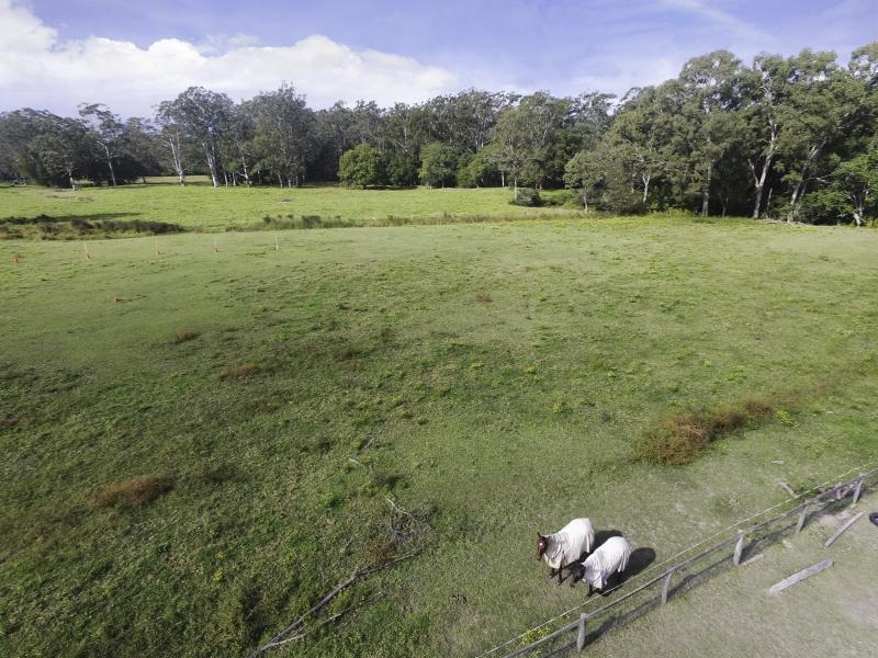 365 Newport Road, Cooranbong, NSW 2265