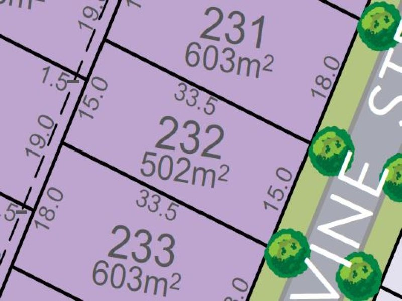 Lot 232, Vine Street, Chisholm, NSW 2322