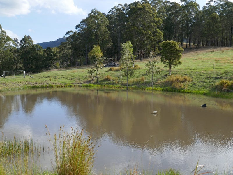 862 Yabbra Road, Old Bonalbo, NSW 2469