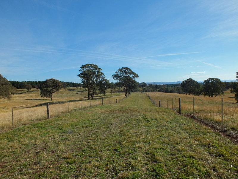 2686 Mitchell Highway, Vittoria, NSW 2799