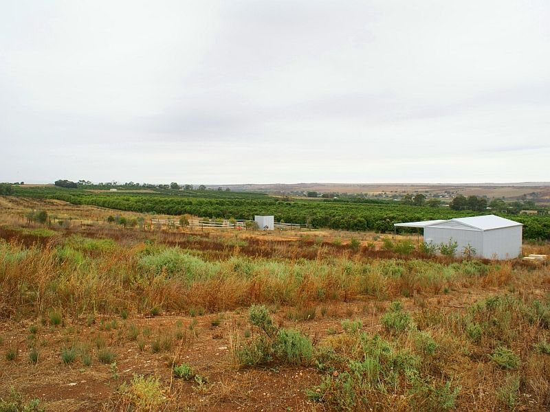 Lot 296 Woodlane Drive, Mypolonga, SA 5254