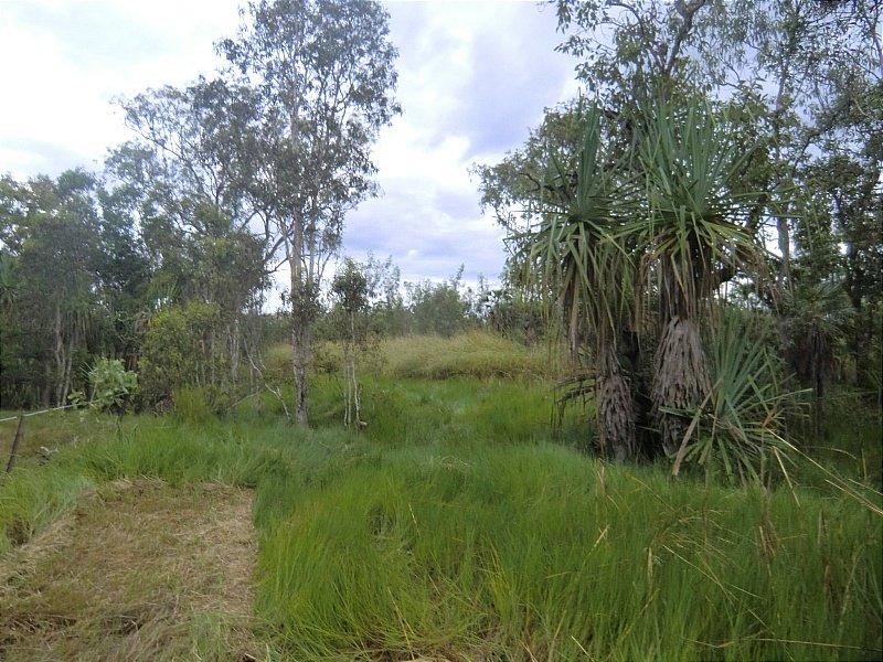 Lot 2629 Mira Road South, Darwin River, NT 0841